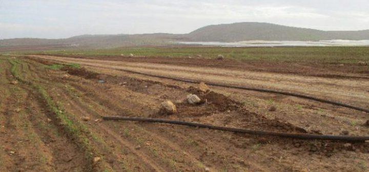 الاحتلال يجرف طريقا عسكريا في الأغوار