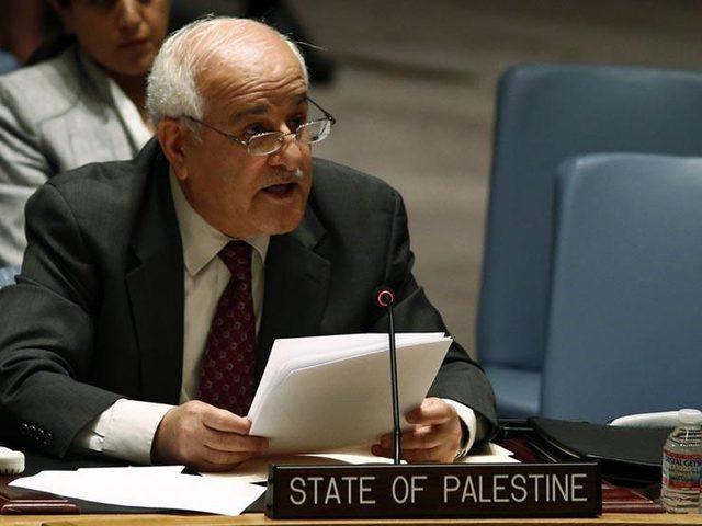 منصور يدعو المجتمع الدولي لتحمل مسؤولياته