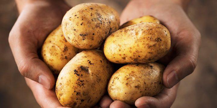كل النصائح حتى لا تصبح البطاطا مسرطنة!