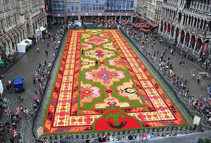 سجادة زهور عملاقة تأسر الأنظار في وسط بروكسل