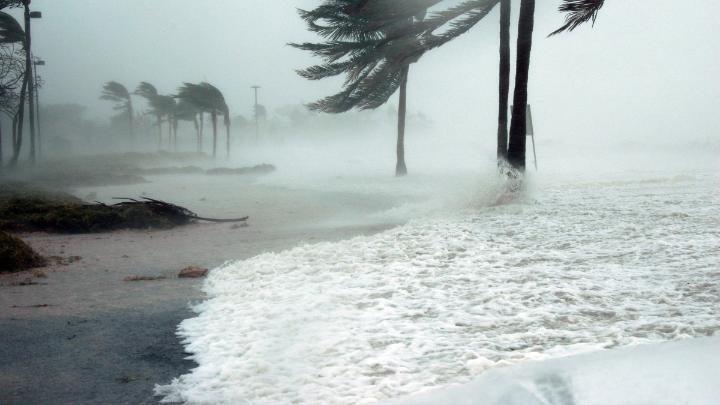 """فيتنام تحشد 500 ألف جندي استعدادا للإعصار""""بيبينكا"""""""