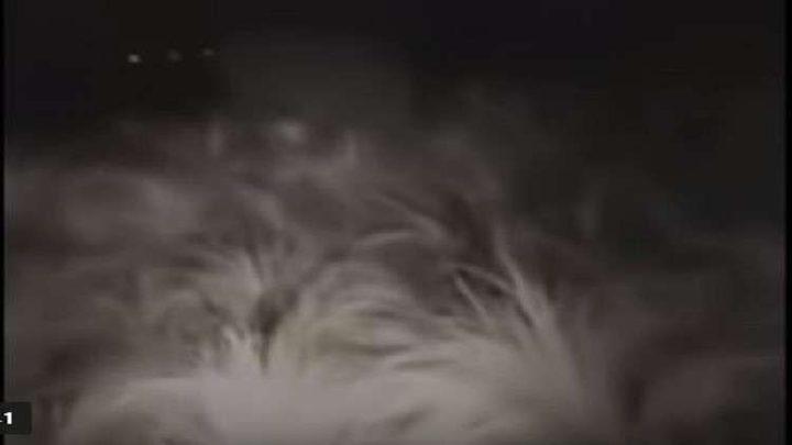 حارس يهرب من كائن غريب متوج بدوائر من الدخان!
