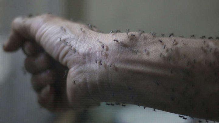 نذر وباء خطير في إسرائيل