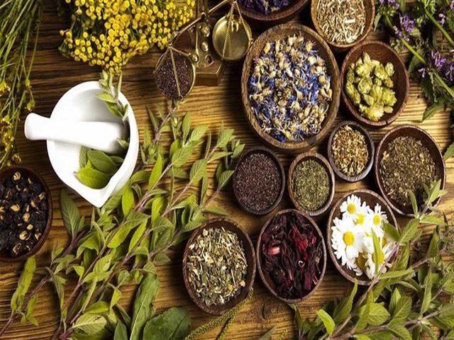 3 اعشاب تساعد على انقاص الوزن بشكل سريع
