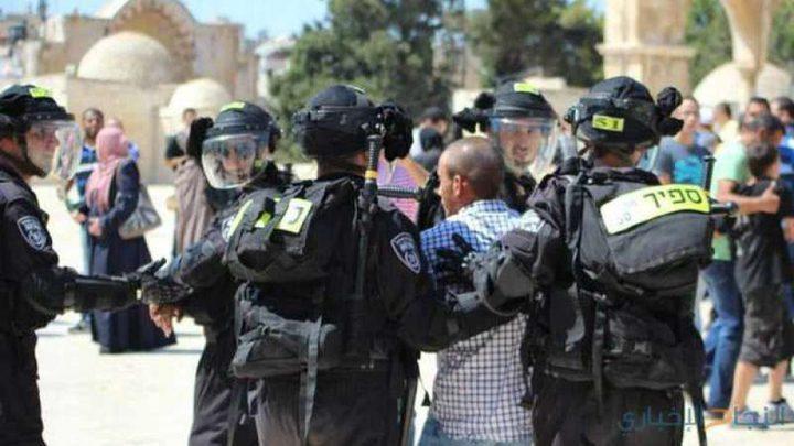 الاحتلال يُبعد4 موظفين في لجنة الإعمار عن الأقصى
