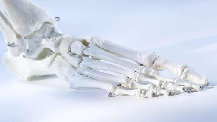 علماء إنماء المفاصل بالطباعة ثلاثية الأبعاد