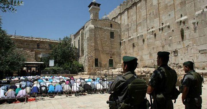 الاحتلال يطرد وفدًا برلمانيًّا دوليًّا من الخليل