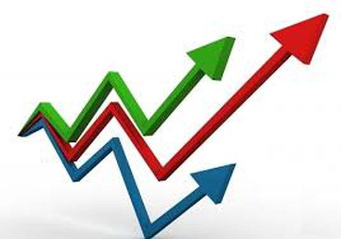 الإحصاء: ارتفاع أسعار المنتج خلال شهر تموز الماضي