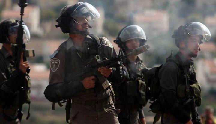 الاحتلال يطلق قنابل الغاز بين المنازل جنوب الخليل
