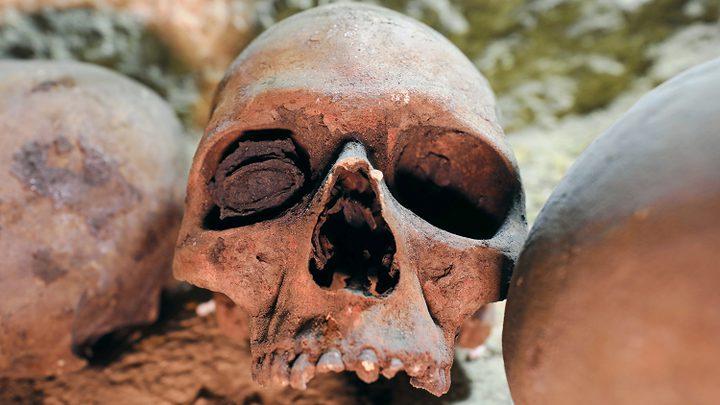 العثور على مقبرة جماعية جديدة تضم 166 جمجمة