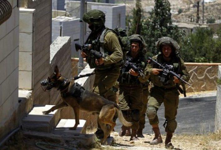الاحتلال يقتحم منزلاً في الخليل ويعتدي على ساكنيه