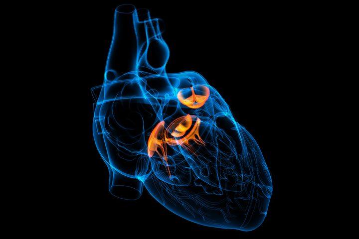 دراسة :مرض قلبي بسيط يمكن أن يسبب وفاتك المفاجئة!