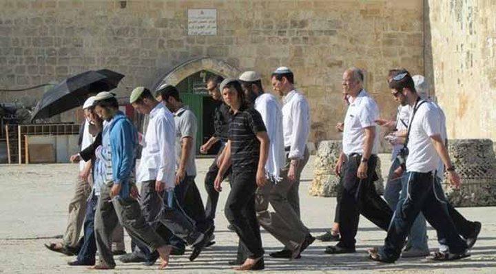 مستوطنون يقتحمون مخيم عين السلطان في أريحا