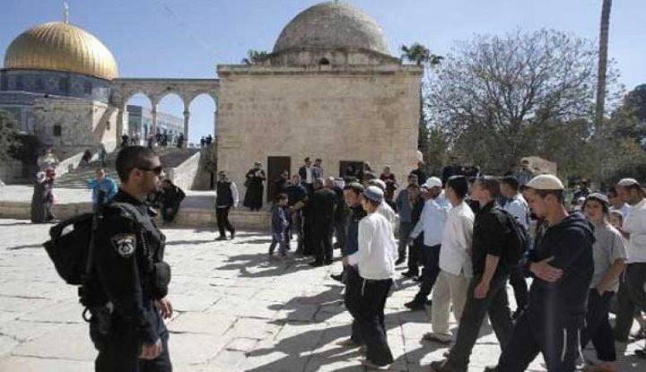 المستوطنون يواصلون اقتحاماتهم للمسجد الأقصى