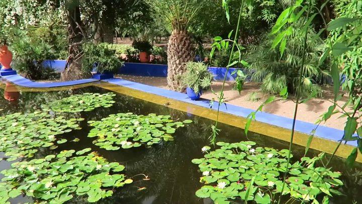 حديقة ماجوريل عندما يصبح الأزرق رمزاً للجمال