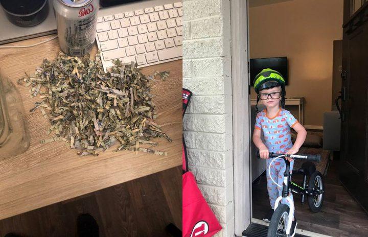 طفل أمريكي يضع مدّخرات والديه في ماكينة فرم الورق