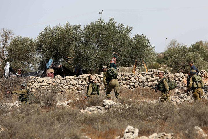 جنود الاحتلال يحاولون منع المزارعين الفلسطينيين من الوصول إلى مزارعهم لحصد الزيتون في قرية الساوية بالقرب من مستوطنةرحيليم، في محافظة نابلس.