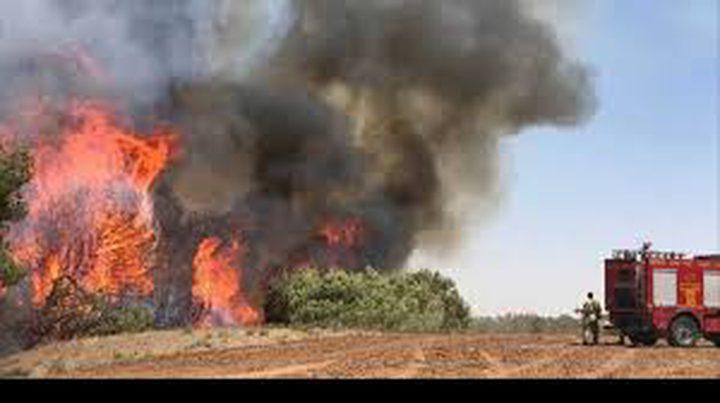 الإحتلال يزعم اندلاع 4 حرائق بمستوطنات غلاف غزة