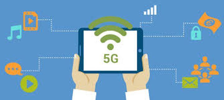 هل تؤثر شبكة 5G الطيور؟