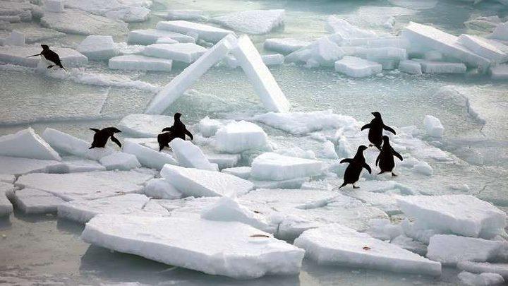اكتشاف يغير نظرة العلماء عن حرارة القطب الجنوبي