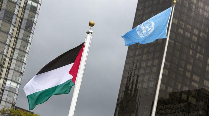 """خبير دولي: هكذا يمكن تفعيل """"سلاح"""" القرارات الأممية"""