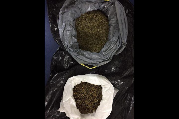 ضبط مخدرات داخل مقبرة