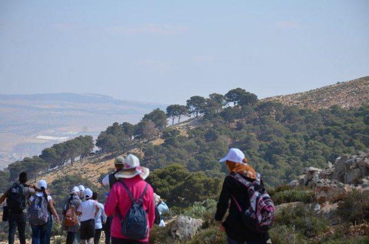 محمية الجبل الكبير: درة محميات فلسطين الطبيعية