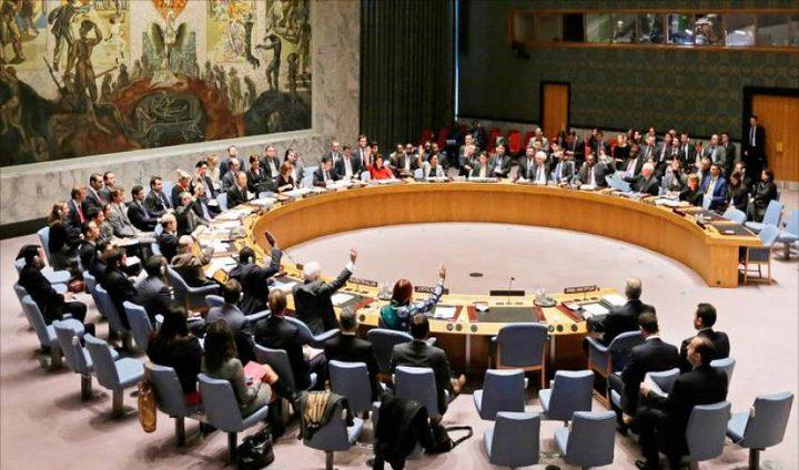 منظمات كندية تطالب بالتصويت لفلسطين بالأمم المتحدة