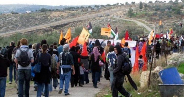 عشرات المواطنين يشاركون في مسيرة بلعين السلمية