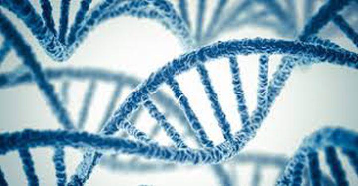هل يستطيع علم تعديل الجينيات التخلص من مرض السمنة؟