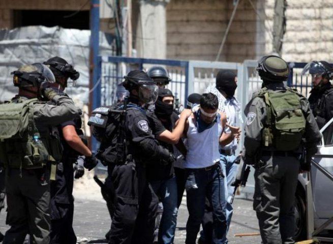 الاحتلال يعتقل 183 مواطنا في الأيام الخمسة الماضية