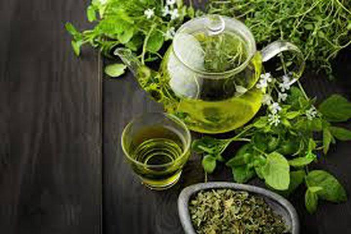 ما هو أنسب الأوقات لشرب الشاي الأخضر؟