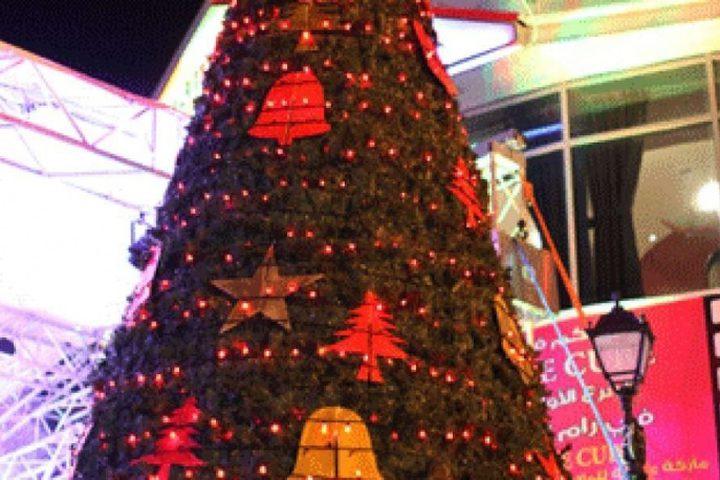 اضاءة شجرة الحرية في بيت لحم