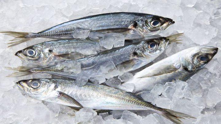 هل يقلل تجميد السمك فوائده الغذائية؟