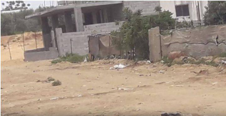 """إعلاميون: تحقيق """"مساكن الغلابة"""" كشف المستور وقرع الجدران"""