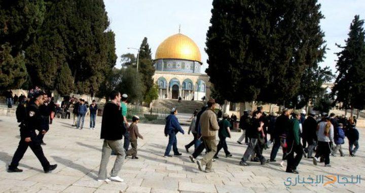 مستوطنون يستأنفون اقتحاماتهم للمسجد الأقصى