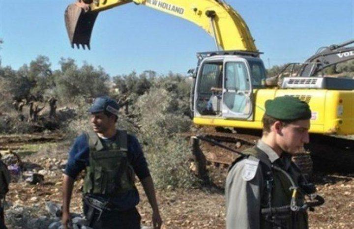 قوات الاحتلال تقتلع اشجار زيتون في بروقين