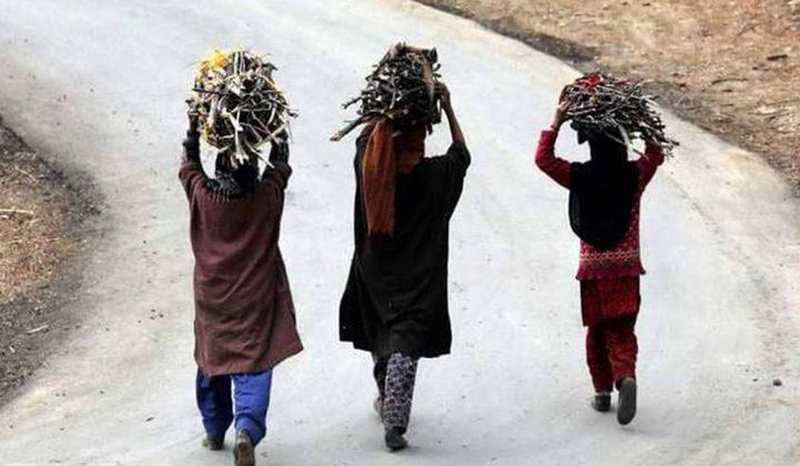 الهند.. جدار نسوي فاصل ضد التمييز بين الجنسين