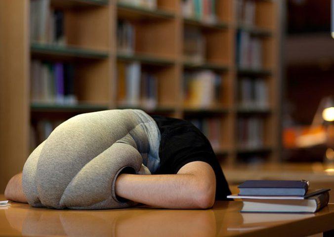 دراسة: القيلولة خلال النهار تزيد فرص الإصابة بالخرف!