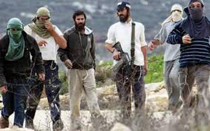 اهالي برقة شمال نابلس يصدون هجوما للمستوطنين