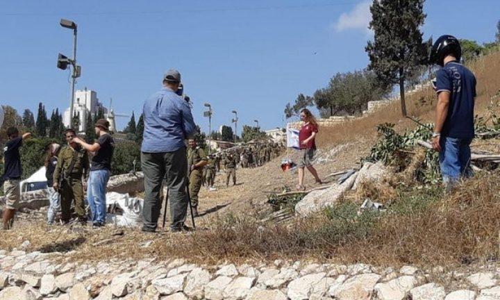 مستوطنون يدمرون مئات الاشتال الحرجية شمال نابلس