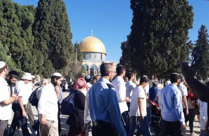 71 مستوطنا وعنصران من سلطة آثار الاحتلال يقتحمون الأقصى