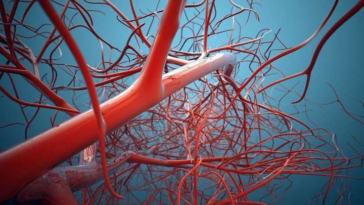 نجاح زراعة أوعية دموية بشرية في المختبر لأول مرة