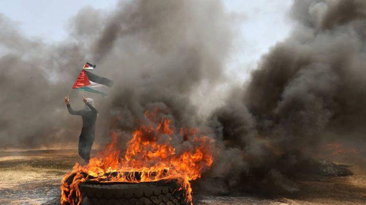 (290) شهيدا ضحايا انفلات سياسة اطلاق النار من قبل الاحتلال