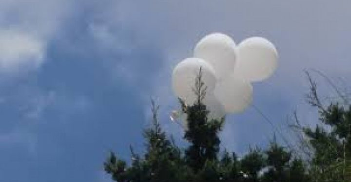 يديعوت : سقوط بالون حارق أطلق من غزة وسقط بسديروت