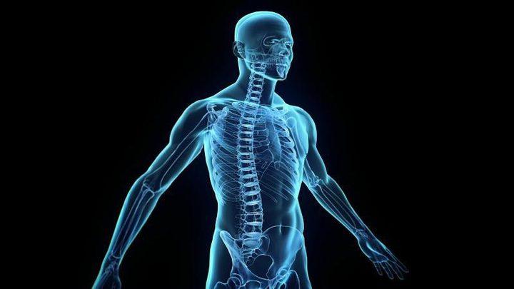 صور: 4 أعضاء في جسم الإنسان لم يعد لها فائدة
