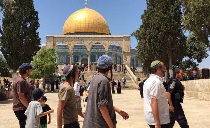 100 مستوطن وطالب تلمودي يقتحمون المسجد الأقصى