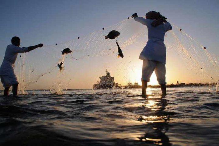 مستثمرون سعوديون يحذرون من خطر يواجه قطاع الصيد