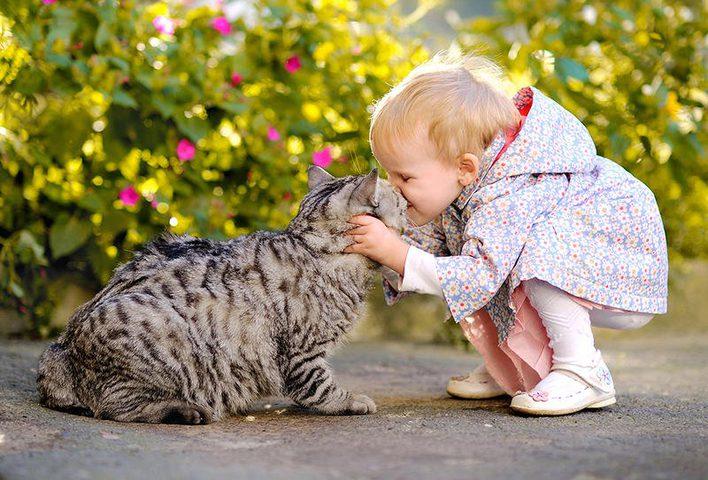 دراسة: من أجل صحة طفلك.. اقتني هذه الحيوانات الأليفة