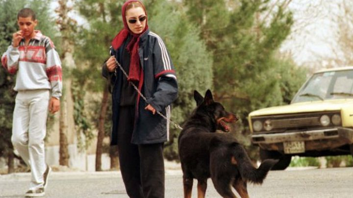 إيران تحظر اقتياد الكلاب في شوارع طهران